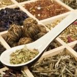 čaj variace — Stock fotografie