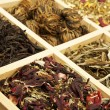 Tea collection. — Stockfoto