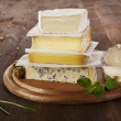 Cheese variation. — Stock Photo