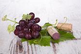 Red wine grape still life. — Stock Photo
