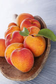 Ripe fresh apricots. — Stock Photo