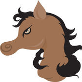 Muscular horse — Stock Vector