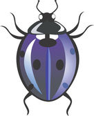 Spotted beetle — Stock Vector