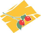 Berries with branch — Stock Vector