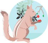 Veverka jíst bobule z rostlin — Stock vektor