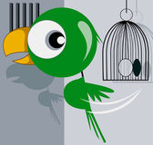 Parrot escaping from a cage — Stock Vector