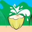 Tender coconut — Stock Vector