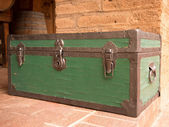 Large Green Travel Trunk — Stock Photo