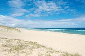 Tasmania sea — Stok fotoğraf