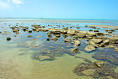 Fishermans beach — 图库照片