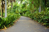 Royal Botanic Garden — Stockfoto