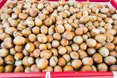 Basket of hazelnuts — Stock Photo
