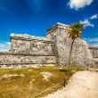 Tulum Messico — Stock Photo #38430529