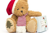 Teddy bear in a red cap with gift box — Stock Photo