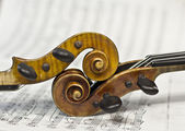 Beautiful violin on a background sheet music. musical instrument. stringed instrument. violin — Stock Photo