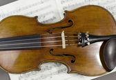 Beautiful violin on a sheet music background — Stock Photo