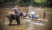 Chiang Mai, THAILAND - april 14, 2014: elephants eject water to  — Stock Photo