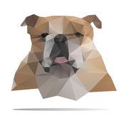 Bulldog head vector — Stock Vector