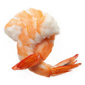 Shrimps isolated — Stock Photo