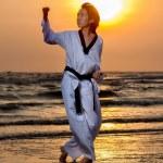 Taekwondo — Stock fotografie #42406943