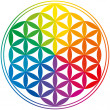 Flower Of Life Rainbow Colors — Stock Vector #27673015