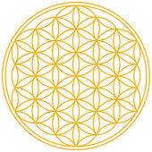 Flower of Life — Stock Vector