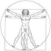 Leonardo da vinci'nin vitruvius dostum — Stok Vektör