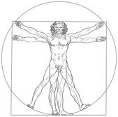 Vitruvian Man Leonardo da Vinci — Stock Vector