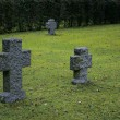 Stock Photo: Granite Gravestones
