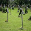 Wooden Grave Crosses — Stock Photo