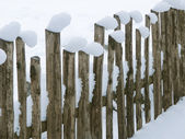 Snow on Fence — Stock Photo
