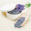 Lavender Flowers — Stock Photo #40437765