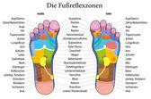 Foot reflexology chart german description — Stock Vector