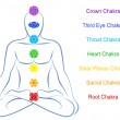 Chakras Man Description English — Stock Vector #46962677
