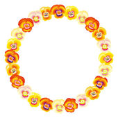 Pansy Orange Frame Circle — Stock Vector