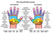 Hand reflexology chart description white german — Stock Vector