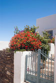 Traditional greek house on Sifnos island, Greece — Stock Photo