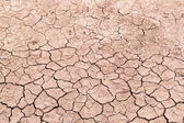 Dry cracked earth background, clay desert texture — Stock Photo