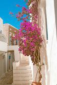 Casa grega tradicional na ilha de sifnos, Grécia — Fotografia Stock
