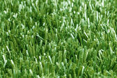Turf — Stock Photo