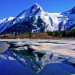 Partially Frozen Lake with Mountain Range Reflected in the Great Alaskan Wilderness. — Stockfoto