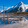 Partially Frozen Lake with Mountain Range Reflected in the Great Alaskan Wilderness. — Stock Photo #29006999