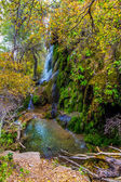 A Surreal Image of the Picturesque Gorman Falls Surrounded by Bright Fall Foliage and Green Moss. — Stock Photo