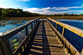 Vanishing View Point of Wooden Fishing Pier — Stock Photo