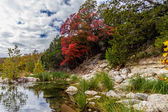 Brilliant Red Fall Foliage at Lost Maples State Park in Texas. — Stock Photo