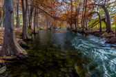 Interesting Perspective of Stunning Fall Colors of Texas Cypress Trees Surrounding the Crystal Clear Texas Hill Country Guadalupe River. — Stock Photo