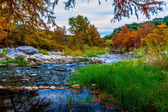 Stunning Fall Colors of Texas Cypress Trees Surrounding the Crystal Clear Texas Hill Country Pedernales Rivers. — Stock Photo