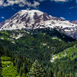 Wide Angle View of Snow Capped Mount Rainier — Stock Photo