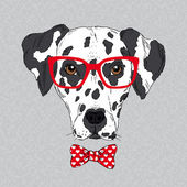 Hand Drawn Vector Fashion Portrait of Dalmatian — Stock Vector