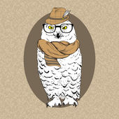 Illustration of Polar Owl Hipster in Hat, Glasses and Scarf on — Stock Vector